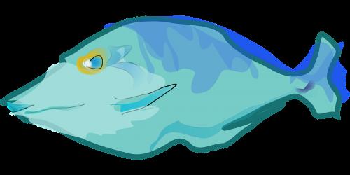 žuvis,mėlynas,vandens,povandeninis,vandenynas,jūra,spalvinga,maudytis,natiurmortas,jūrų augalija ir gyvūnija,vienas,vienas,vienas,nemokama vektorinė grafika
