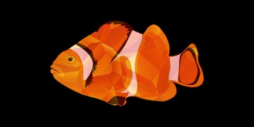 žuvis, žvejybos, tipų žvejybos, žvejybos animaciją, žvejybos ežerų, figūra, žuvis vaizdas, žuvys nuotrauka, žuvų iliustracijos, žuvis vektorius, žuvų PNG, žuvis logotipas, žuvų grafika, žuvų dizainas, žuvis marškinėlius, žuvis dovana, background vaizdai, pixabay, žuvų mėsa, žuvis klipai, žvejoti daugiskaitos, žuvų faktai, taškų, Laisvalaikis Kamienas nuotraukos, Nemokama iliustracijos