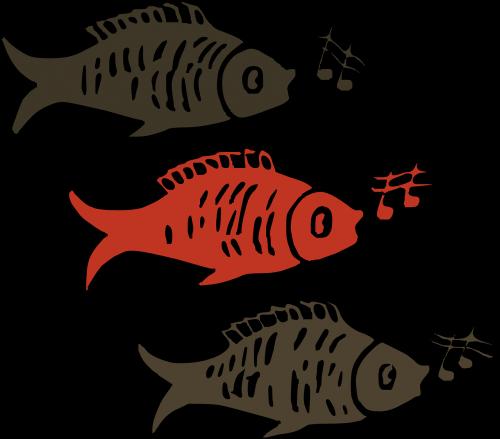 žuvis,dainuoti,muzika,akvariumas,daina,dainuoti,dainos,humoras,nemokama vektorinė grafika