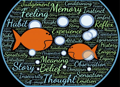 žuvies dubuo,žuvis,panardinimas,aplinka,aplinka,vanduo,povandeninis,nežino,konceptualus,tikrovė,santykiai,susiję,pora,požiūris,kontekstas,pažintis,konteineris,viduje,apribojimas,apribojimas,nelaisvėje,muitinės,istorija,tikėjimas,patirtis