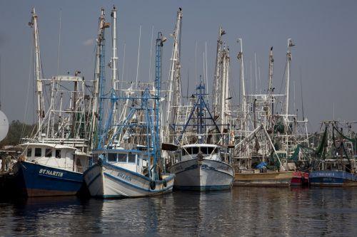 žvejybos & nbsp, valtys, uostas, jūra, laivai, komercinis, gaudyti, jūrų, neto, industrija, žvejai, uostas, jūros gėrybės, marina, viešasis & nbsp, domenas, laivai, kranto, jūrinis, stiebas, traleriai, žvejybos laivai uoste