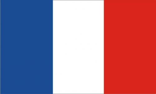 vėliava,france,Tautinė vėliava,tauta,simbolis,valstybė,nacionalinė valstybė,Tautybė,vertikalus trileris,trispalvis,mėlynas,balta,raudona,nemokama vektorinė grafika