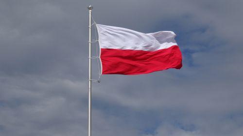 vėliava,Lenkija,stiebu,lenkų vėliava,tėvynė,tauta,patriotizmas,fonas,balta,raudona,simbolis,piktograma,juosta,herbas,nacionalinės spalvos,grafika,Lenkijos vėliava,šventė,balta-raudona,lenkų kalba,Nepriklausomybės diena,Nacionalinė diena,ceremonija,nepriklausomumas,lenkas,Tautybė,mozaika,erelis,emblema