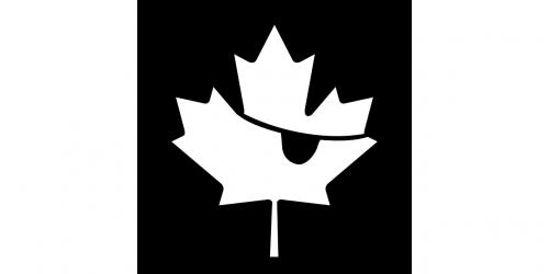 vėliava,Kanados,piratas,klevas,lapai,pleistras,Kanada,nemokama vektorinė grafika