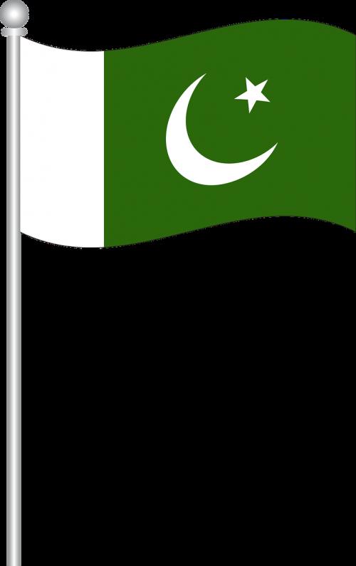 Pakistano vėliava,vėliava,pasaulio vėliava,Šalis,simbolis,nacionalinis,laisvė,nemokama vektorinė grafika