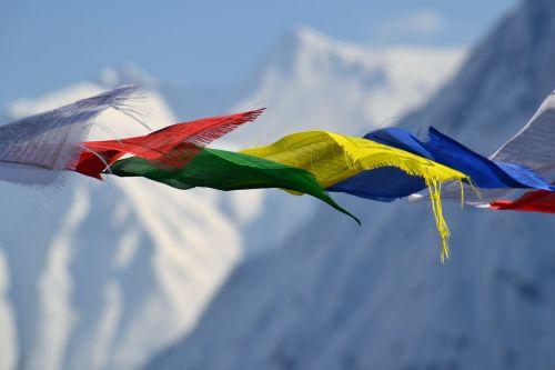 tibetiečių maldos vėliavos,vėliavos,spalva,kalnas,vėliava,spalvinga,vėjas,dinamika,gamta,laisvė,Nepalas,Himalajus,kraštovaizdis