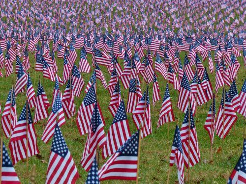 vėliavos, amerikietis, usa, patriotinis, tauta, nacionalinis, vėliavos