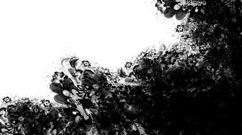 gėlių,gėlė,ūkis,gėlės,dekoratyvinės gėlės,maža gėlė,gėlių sodas,gamta,pavasaris,botanistas,gėlių puokštė,garnyras,gėlių krepšelis,gėlių kompozicija,gražus,augmenija,apdaila,išdėstymas,rožės,gėlių šaka,tekstūra,tekstūros,juoda,balta,vienspalvis,rėmas,purslų