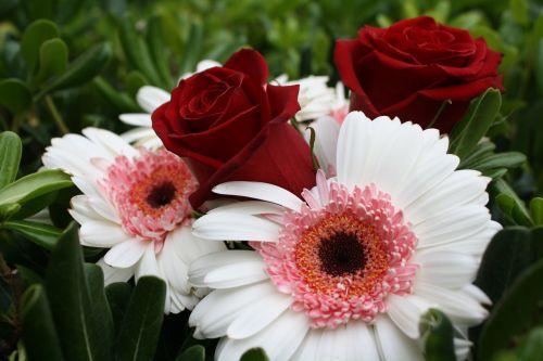 gėlių,puokštė,pavasaris,gėlė,gėlių puokštė,gamta,gėlių puokštė,gėlių puokštė,žalias,žydėti,vasara,žiedas,rožinis,augalas,balta,žiedlapis,sodas,Vestuvės,meilė,botanikos,romantiškas,šviežias