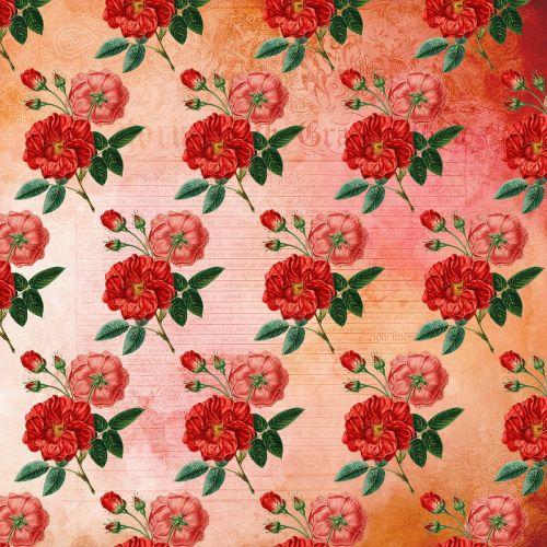 gėlių modelis,gėlių popierius,gėlių tapetai,gėlių,gėlės,rožės,prašmatnus,girly,vintage