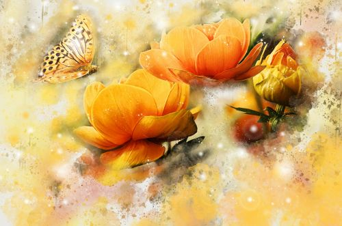 gėlė, gėlių, drugelis, geltona, geltonos spalvos & nbsp, gėlės, oranžinės & nbsp, gėlės, drugelis & nbsp, gėlės, gėlių & nbsp, fonas, grunge & nbsp, akvarelė, grunge & nbsp, akvarelė, gėlės & nbsp, fonas & nbsp, drugeliai & nbsp, gražūs & nbsp, oranžiniai & nbsp, šviesūs, gėlių ir drugelių akvarelė