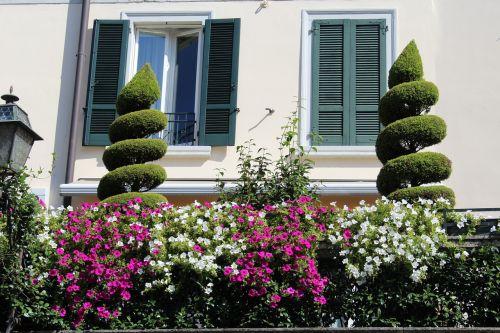 žali balkonas,gėlės,balkonas,dekoratyviniai augalai,langai,fasadas,langinės