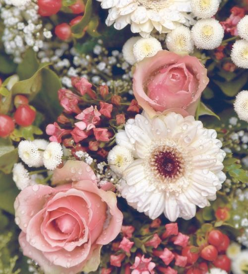 gėlės,puokštė,gėlių puokštė,gėlių puokštė,gėlių puokštė,gėlių,pavasaris,Vestuvės,romantiškas,sodas,botanikos,žydėti,žiedas,rožinis