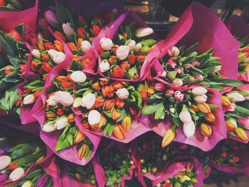 gėlės,puokštė,gėlių puokštė,gėlių,gėlių puokštė,gėlių puokštė,krūva,spalvinga,išdėstymas,šviežias,floristas,romantiškas,romantika,tulpės,žydėti,žiedlapis,raudona,geltona,balta,oranžinė,rožinis,meilė,pavasaris