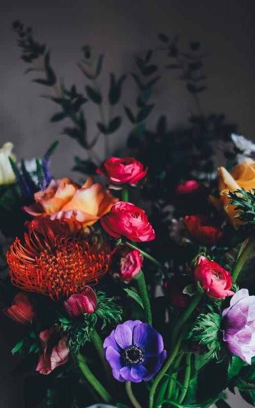 gėlės,puokštė,gėlių puokštė,gėlių puokštė,gėlių puokštė,gėlių,krūva,spalvinga,išdėstymas,gamta,floristas,žydėti,žiedlapis,romantiškas,augalai,rožės,meilė,šviežias,raudona