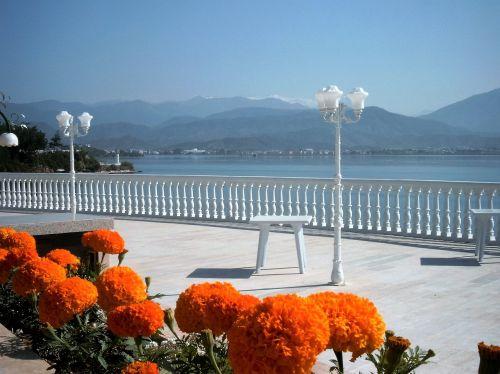 gėlės,boulevard,Jūros vaizdas,Turkija