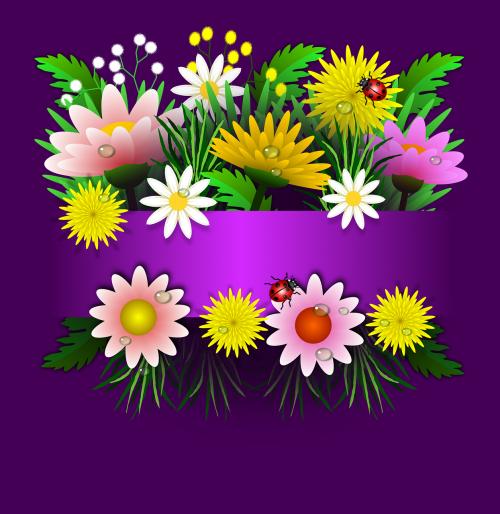 gėlės,gėlių,gėlė,sodas,puokštė,pavasaris,spalvinga,rytinė,augalai,augmenija,amorous,nemokami brėžiniai,kortelės,kortelė,fonas,Alyva,violetinė