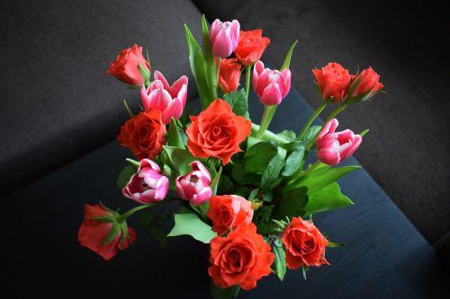 gėlės,puokštė,rožė,tulpė,gamta,galimybė,gimtadienis,vardadienis,Motinos diena,močiutės diena,moterų diena,raudona,rožinis