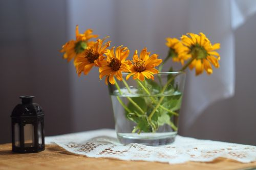gėlės,kalendra,vasaros gėlės,šviesus,gražus,geltonos gėlės,dekoratyvinis augalas,marigoldas,žiedadulkės,budas,oranžinės gėlės,lapai,spalvinga,gamta,Iš arti