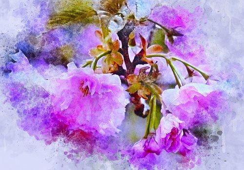 gėlės, lapai, violetinė, menas, Anotacija, akvarelė, pobūdį, Vintage, meninis, dizainas, Aquarelle, dažų Šļakstēties, skaitmeninis menas, skaitmeninis dažai, piešimo, Nemokama iliustracijos