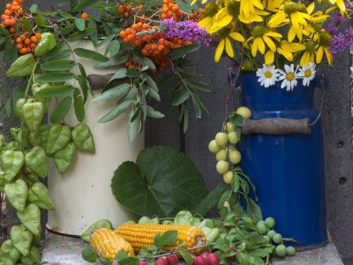 gėlės,ąsočiai,kukurūzų burbuolės,pieno gali,kalnų pelenai