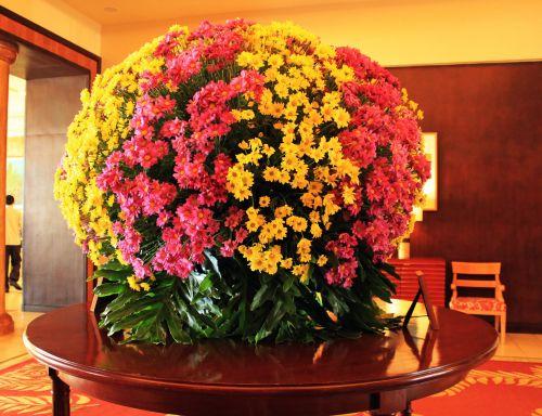 gėlės & nbsp, stalas, gėlės, spalvingos & nbsp, gėlės, žiedlapiai, apdaila, gėlių & nbsp, susitarimas, krūmas, gėlės stalo