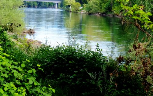 upė, oregonas, srautas, teka, vanduo, gamta, lauke, tekantis upė