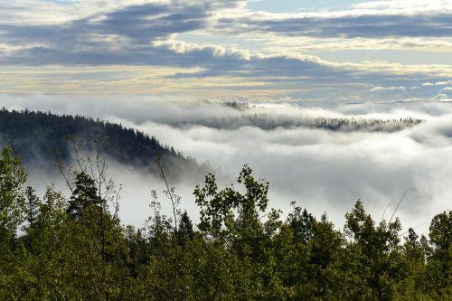 rūko bankas,kraštovaizdis,debesys,dangus,gamta,padengtas rūke,slėnis,sezonas,peizažas,taikus,kaimas,lauke,medis,kalnas,kaimas,ruduo