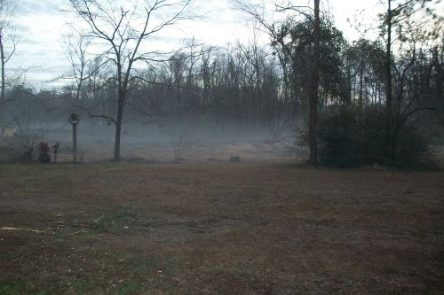 rūkas,rūkas,rūkas,kraštovaizdis,migla,rytas,miglotas,gamta,lauke,peizažas,oras,vaizdingas,vaizdas,lauke,tamsi,mįslingas,paslaptis,medžiai,ruduo,kritimas,sezonas