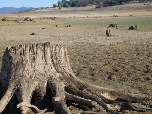 folsom & nbsp, ežeras, Kalifornija, sausra, vanduo, Folsom ežero sausra 62