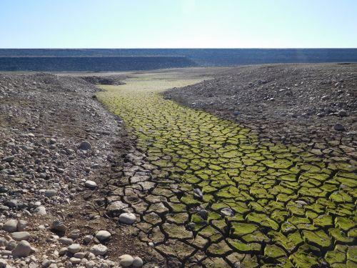 folsom & nbsp, ežeras, Kalifornija, sausra, vanduo, purvas, pyragas & nbsp, purvo, įtrūkimai, Folsom ežero sausra 87