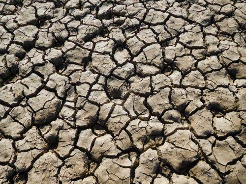 folsom & nbsp, ežeras, Kalifornija, sausra, vanduo, purvas, pyragas & nbsp, purvo, įtrūkimai, Folsom ežero sausra 94