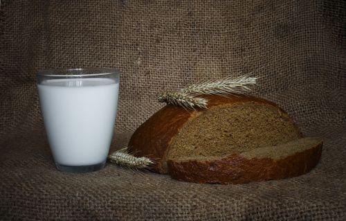 maistas,Rusija,rusų,ukraina,duona,gyvenimas,pienas,gėrimai,gerti,gerti,balta,kvieciai,stalas,tradicinis,ukrainiečių kalba,pietūs,skanus,kaimas,namai,Moonshine,naudinga