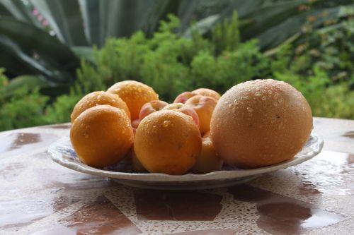 maistas, sveikas, apelsinai, greipfrutas, Citrusiniai vaisiai, vaisių plokštė, vitaminai, vaisiai, frisch, mityba, skanus, natiurmortas, rūgštus, be honoraro mokesčio