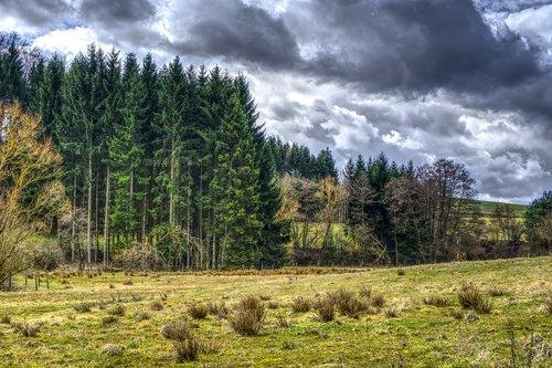 miškas, meadow, pobūdį, medis, mediena, kraštovaizdis, Panorama, debesys, dramos, kalnai, dangus, laukas, HDR, High Dynamic Range, kontrastas, lietaus, lietaus debesys, lietaus debesys, audra