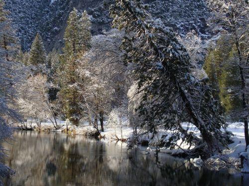 miškas,ežeras,gamta,Nacionalinis parkas,Nacionalinis parkas,usa,josemitas,žiema,sniegas,Krantas,medžiai
