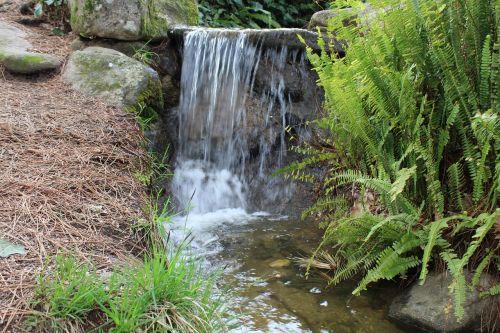 miškas,krioklys,vanduo,dabartinis,kritimo,kalnas,natūralus vanduo,upė,natūralus,kritimas,gamta,srautas,gražus,natūra,judėjimas,žalias