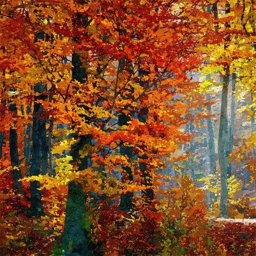 Medžiai,  Dažymas,  Miškas,  Naftos & Nbsp,  Dažymas,  Ruduo,  Kritimas,  Medis,  Mediena,  Miškas,  Gražus,  Spalvos,  Spalvos,  Rudens & Nbsp,  Spalvos,  Raudona,  Oranžinė,  Auksinis,  Aliejus,  Menas,  Iliustracija,  Miško Tapyba Rudens Medžiai