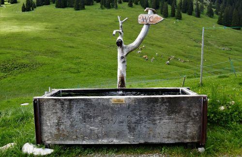 fontanas,kalnuotas vanduo,katalogas,tualeto laikmena,gamtos fontanas,kalnų fontanas