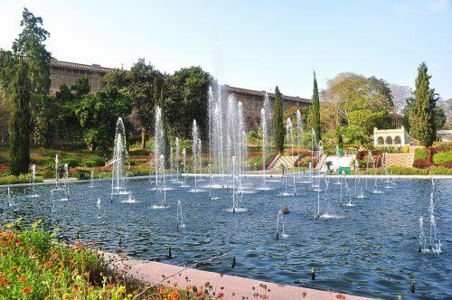 fontanas, sodas, vanduo, šviesa, gėlė, medžiai, parkas, fontano parkas