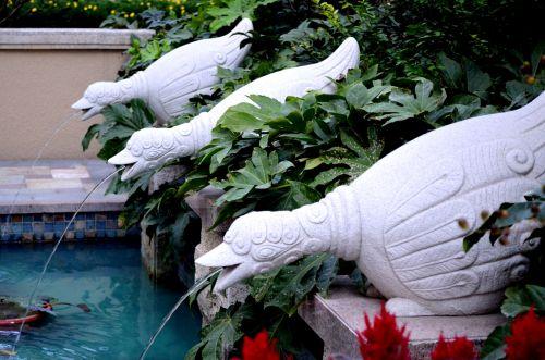 fontanas, fontanai, paukštis, snapelis, nuleidimas, pour, vanduo, sodas, tvenkinys, kraštovaizdis, fontanų nuleidimas