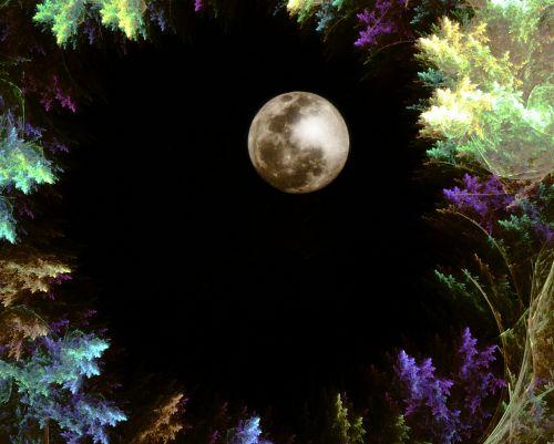 fraktalas,miško fraktalas,naktinis miškas,šviesos fraktalas,fantazija,naktis,mėnulis,miškas,dizainas
