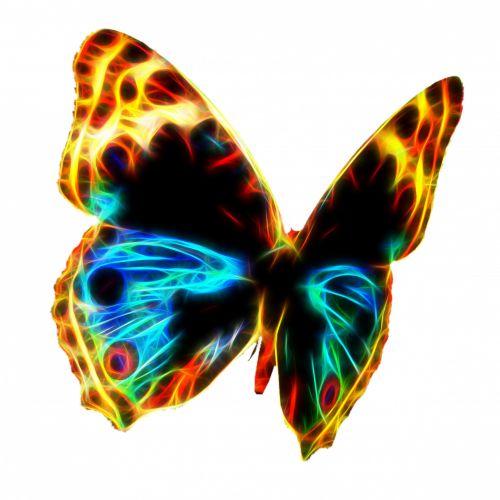Fraktalas & nbsp, viela & nbsp, liepsna & nbsp, drugelis, drugelis, drugelis & nbsp, Iliustracijos, gyvūnas, vabzdys, gamta, fraktalas, liepsna, laidai, spalva, vaivorykštė, sparnai, fraktalo vielos liepsnos drugelis