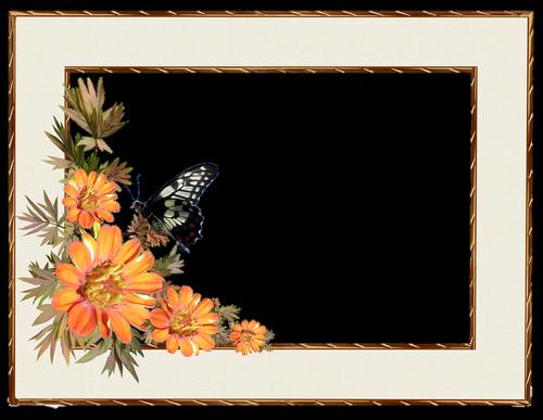 rėmas, sienos, gėlės, drugelis, dekoratyvinis, Nemokama iliustracijos