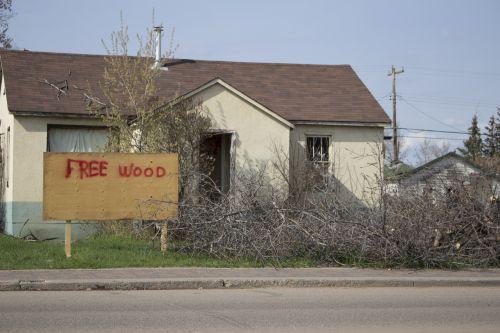 Laisvas, mediena, juokinga, kūrybingas, pokštas, nemokama medžio juokinga kūryba