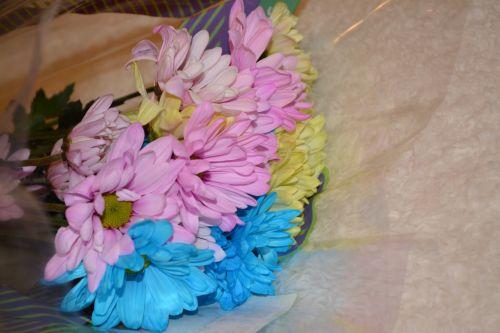 Šviežias,  Gėlės,  Flora,  Makro,  Puokštė,  Šviežios Gėlės Flora Makaronų Puokštė 3