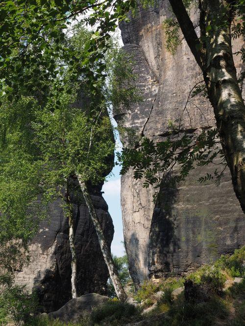 frienstein globėjas,frienstein,elbe smiltainis,žygis,smiltainio uolienos,kraštovaizdis,akmens formavimas,žygiai,Rokas,Elbe smiltainio kalnai,smiltainio kalnas,tvirta pilis,Saksonijos šveicarija