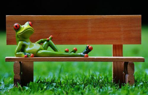 varlė,bankas,stendas,atsipalaidavęs,figūra,juokinga,poilsis,atsipalaidavimas,melas,gyvūnas,saldus,mielas,gyvūnų pasaulis