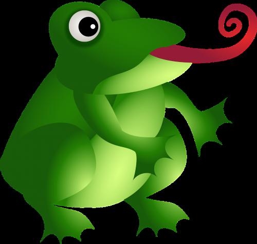 varlė,amfibija,žalias,gyvūnas,laukiniai,laukinė gamta,liežuvis,animacinis filmas,laukinis gyvenimas,laukinis gyvūnas,nemokama vektorinė grafika