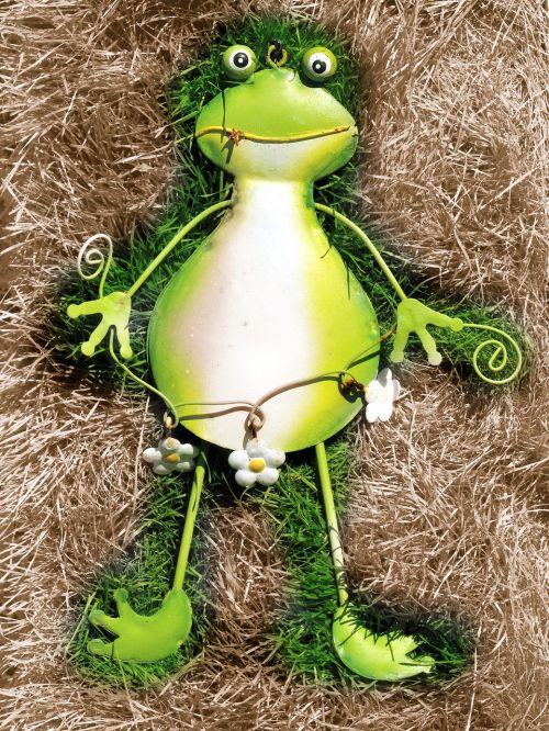 varlė,žalias,žalia varlė,Uždaryti,rupūžė,maerechenfiguren,varlės princas,juokinga,gyvūnas,žolė,pieva,gamta,uždaryti vaizdą,įdegis,sodas,out,lakštas,natiurmortas,motyvas,alavo varlė,juoktis,linksmas